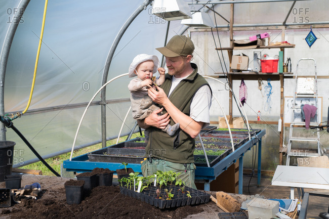 Man showing baby a plant start in a greenhouse