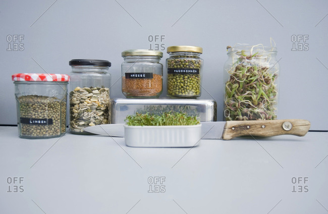 Preserving jars with grains- mung sprouts and cress- home grown sprouts