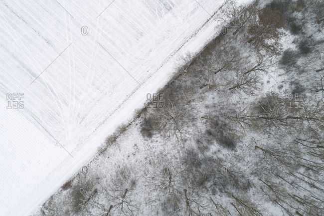 Wood boundary to snow-covered agricultural fields seen from above