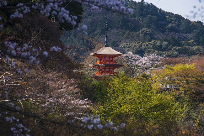 Japan- Kyoto- view to Kiyomizu-dera temple