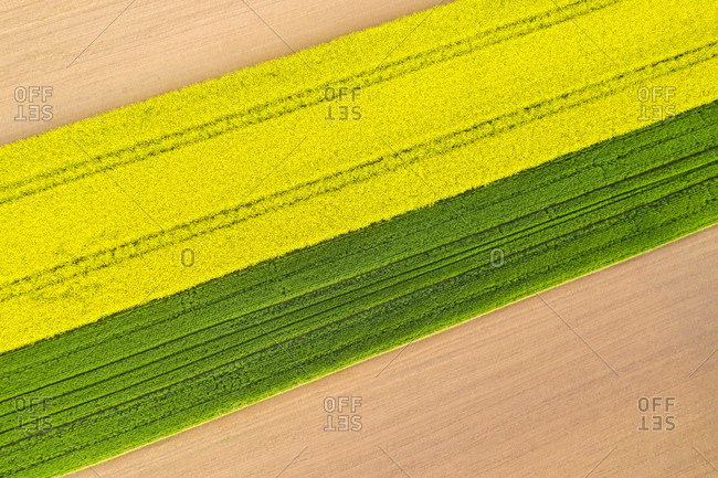 Germany- Baden-Wuerttemberg- aerial view of fields