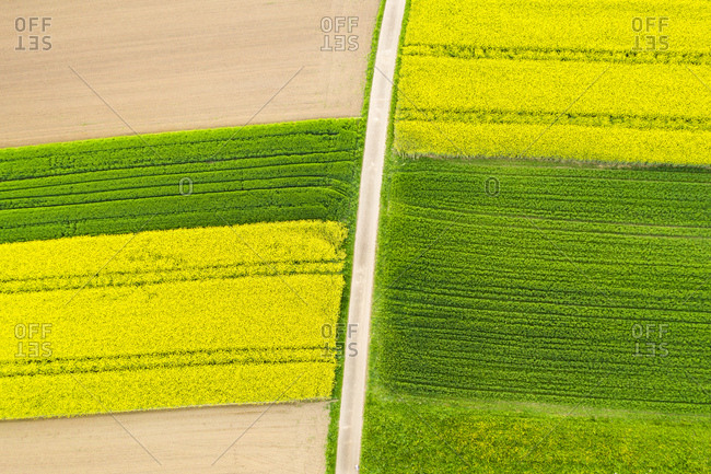 Germany- Baden-Wuerttemberg- aerial view of fields with country lane