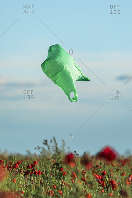 Green plastic bag blown by the wind