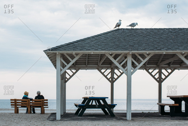 Couple sitting on bench near a  beach pavilion with two seagulls on top