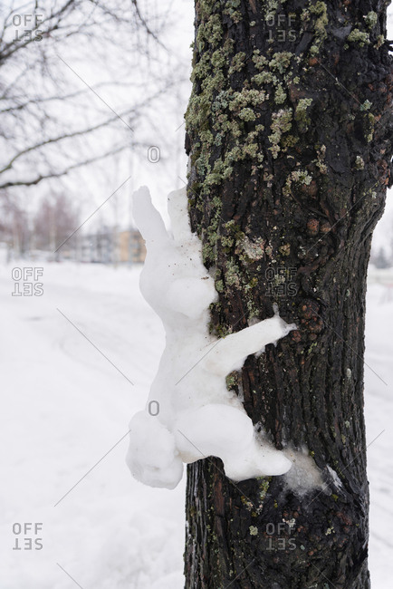 Snow in the shape of a rabbit on a tree