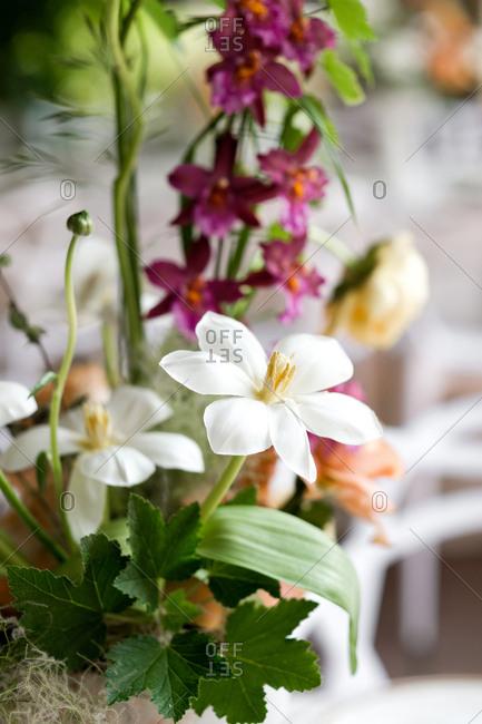 Close up of wedding flower centerpiece