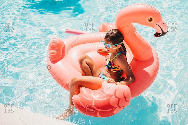 Girl in swimming pool on flamingo float