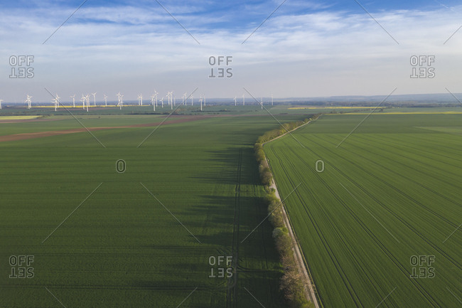 Germany- Saxony-Anhalt- aerial view of fields with wind farm in background