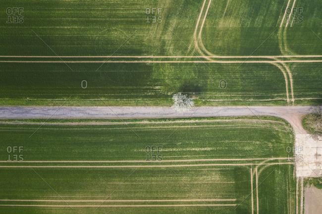 Germany- Saxony-Anhalt- aerial view of fields