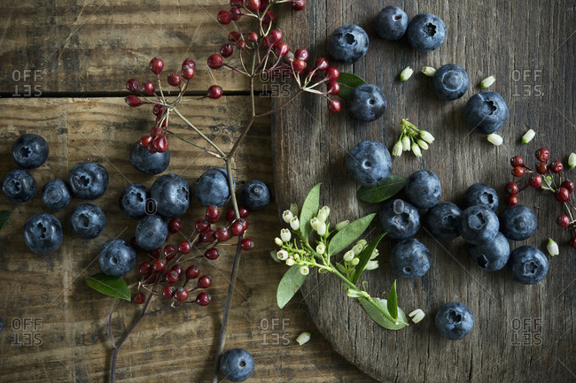 Bowl of blueberries and rosehip- blueberry blossoms on wood