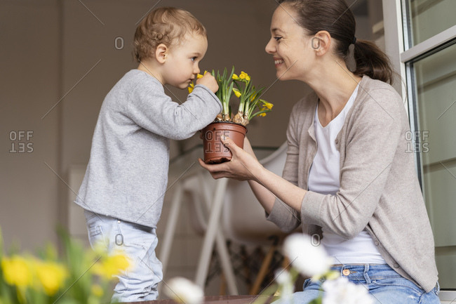 Cute little girl smelling at flower held by her mother