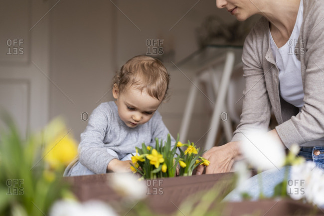 Mother and daughter planting flowers together at home