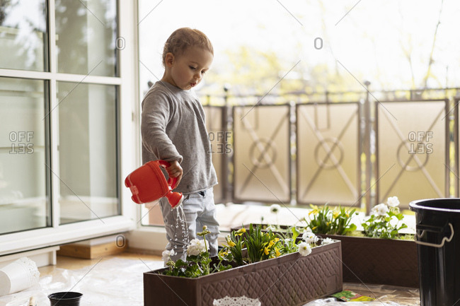 Cute little girl watering flowers at home