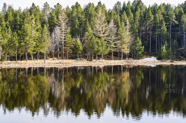 France- Pyrenees- lake surrounded by pine trees
