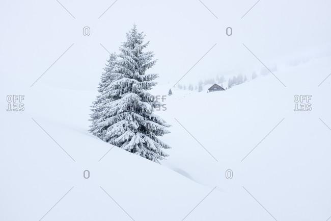 Austria- Salzburg State- Heutal- Sonntagshorn- snow-covered landscape
