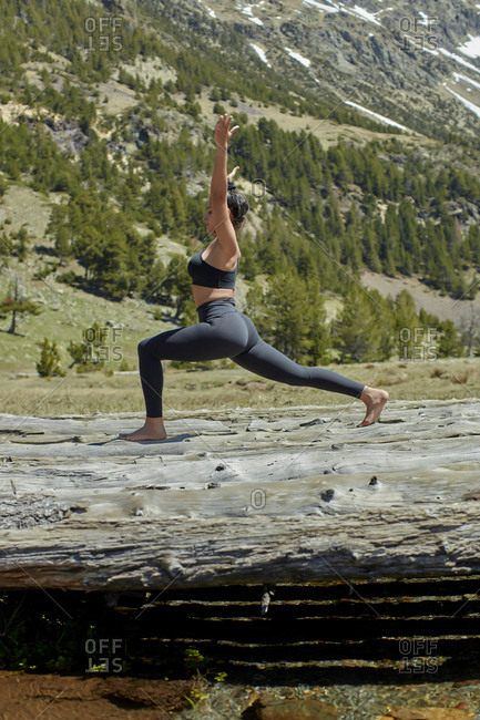 Young woman doing yoga on tree trunks in nature- warrior pose
