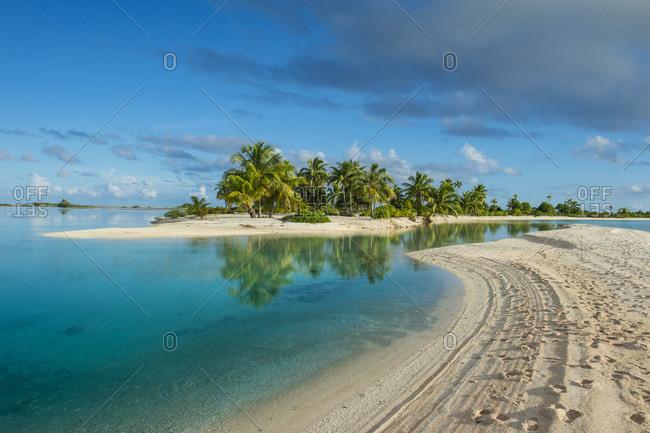 French Polynesia- Tuamotus- Tikehau- palm beach