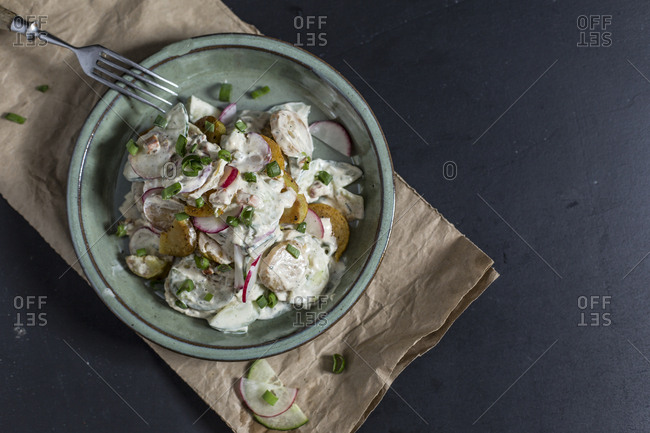 Bowl of fried potato salad with cucumber- red radish- spring onions and mayonnaise yogurt dressing