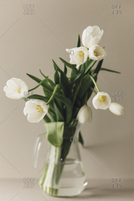 White tulips in a vase against a neutral background