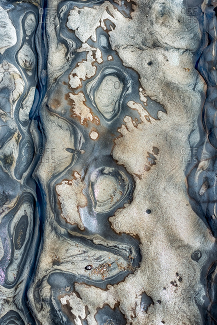 Close-up view of tide pool rocks with unique colors and patterns
