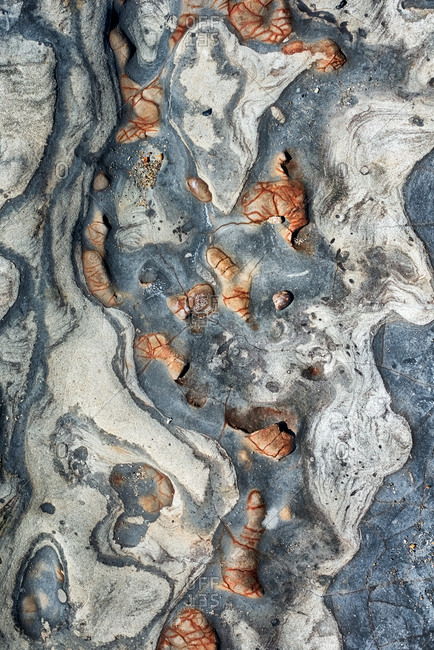 Overhead view of tide pool rocks with unique colors and patterns