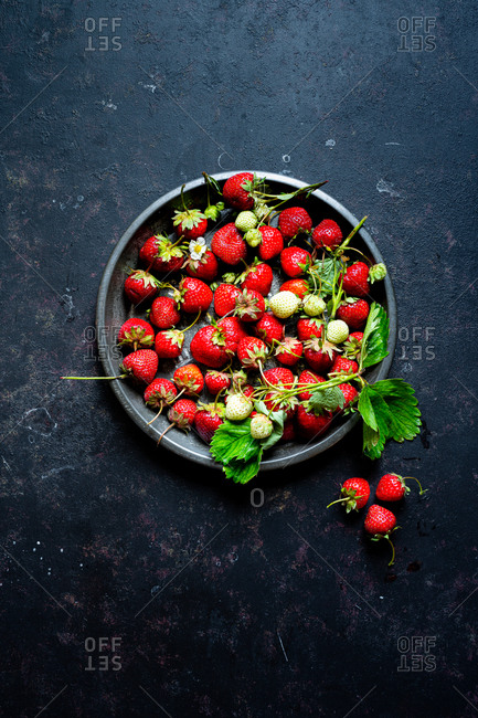 Freshly picked strawberries with leaves and flowers, in a vintage pie tin.