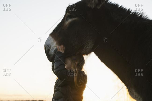Girl standing underneath donkey