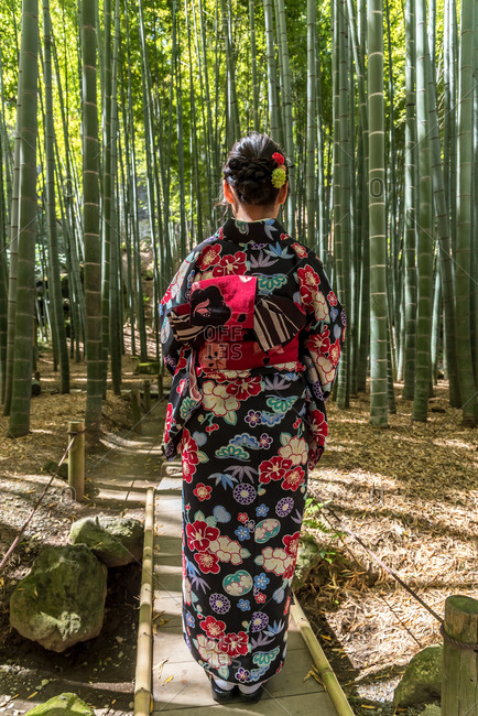 Women wearing Japanese kimono walking in bamboo forest in Kamakura