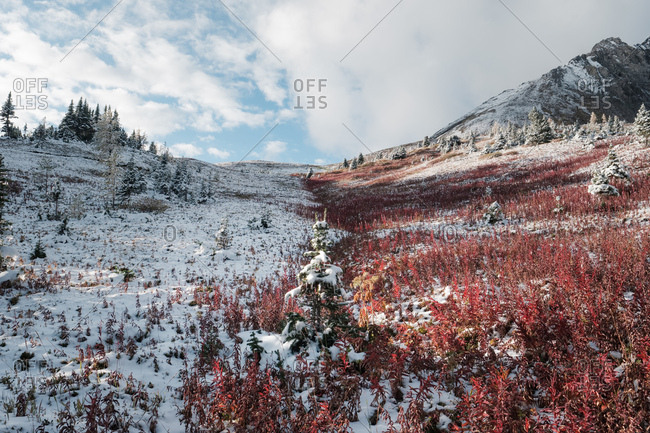 Abrupt change of seasons to winter in the Rocky Mountains