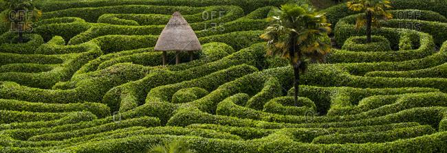 A maze in Glendurgan Garden on the Lizard peninsula in Cornwall in the UK