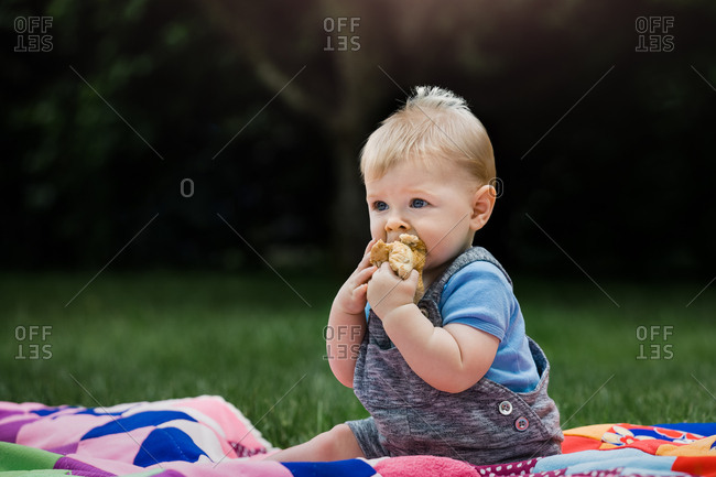 Baby boy eating a bun at a picnic