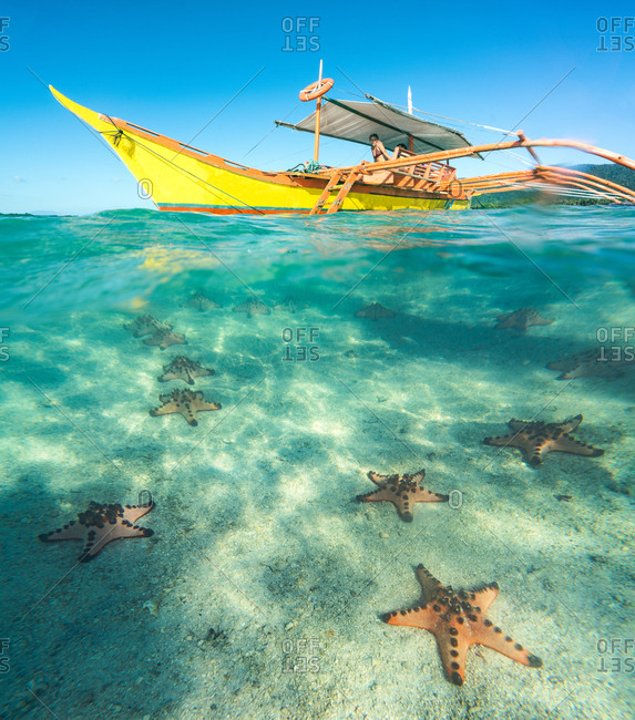 Yellow boat with tourists and picturesque view through blue water of sea stars on sandy bottom