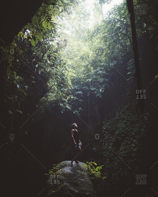 Traveler standing on rock in beautiful dark forest with lush tropical vegetation looking up on beam of light, Bali