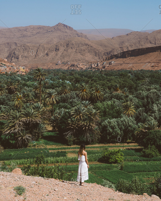 Back view at distance of woman in white dress standing on desert hill against lush green palm park, Morocco