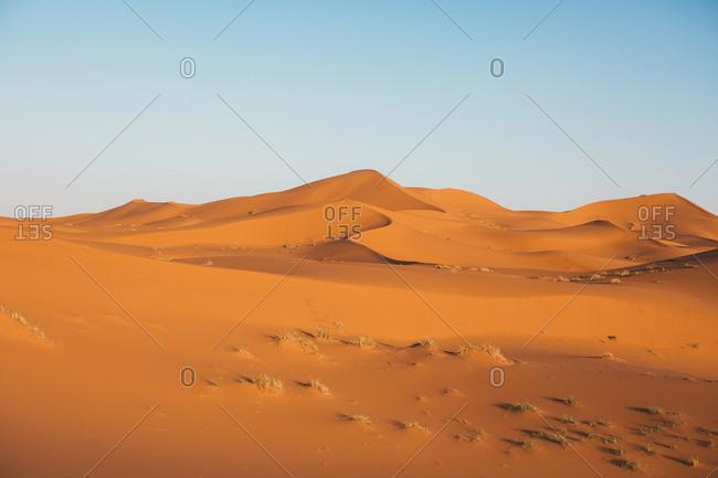 red sandy dune of desert in Morocco