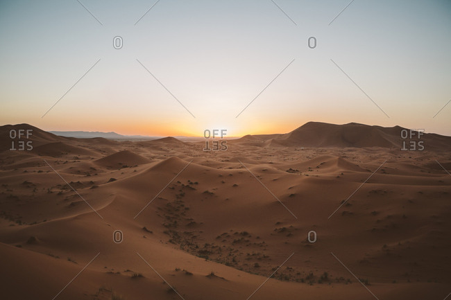 Minimalist view of camels on sand dune in desert against sunset light, Morocco