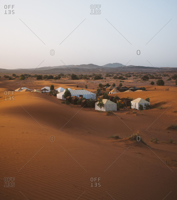 View of white camp tents between few green trees on sand of desert in Morocco