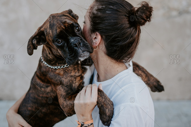 Side view of attractive woman and boxer dog with kind face enjoying and embracing