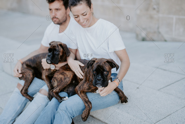 Young people smiling and sitting bonding with cute serious boxer dogs outside