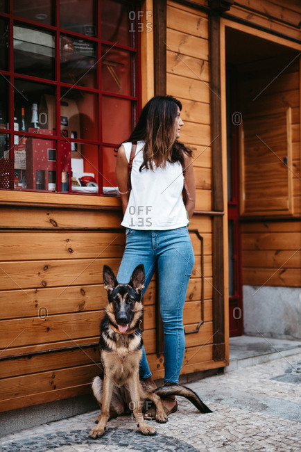 Cute german shepherd standing on cobblestone pavement with owner standing