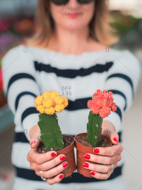 Female with blooming cactus plant
