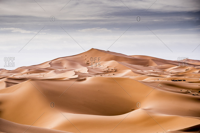 Landscape of desert with sand hills in Marrakesh and camels resting in the distance, Morocco