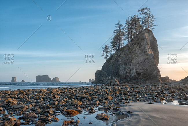 Low tide and sea stacks at beach on the Washington coast
