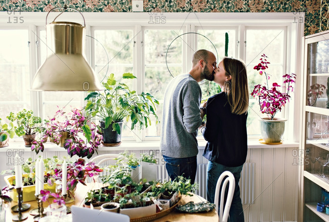 Mid adult couple kissing while gardening by window in room at home