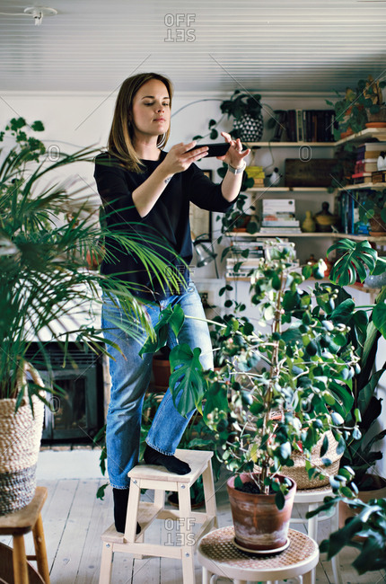 Full length of woman standing on stool photographing potted plant in room at home