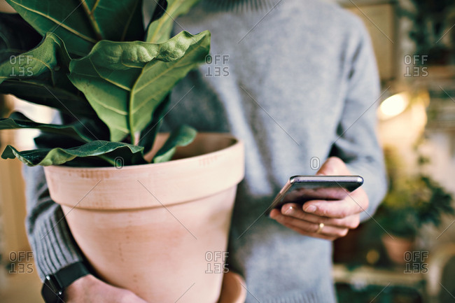 Midsection of man holding potted plant while text messaging on mobile phone at home