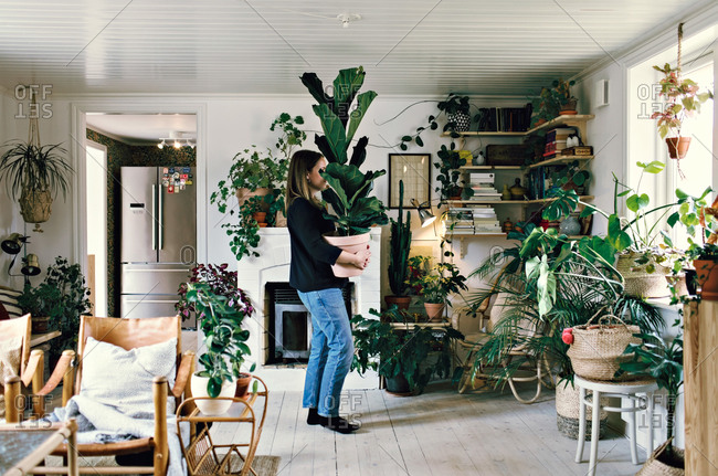 Full length side view of woman carrying potted plant at home
