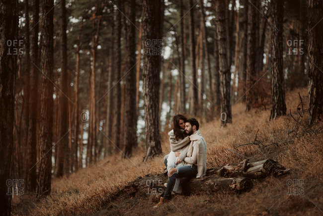 Couple sitting together on a log in a forest