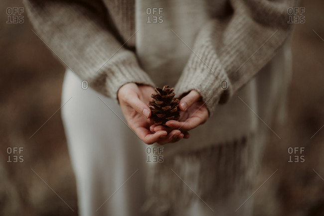 Close up of a woman holding a single pinecone