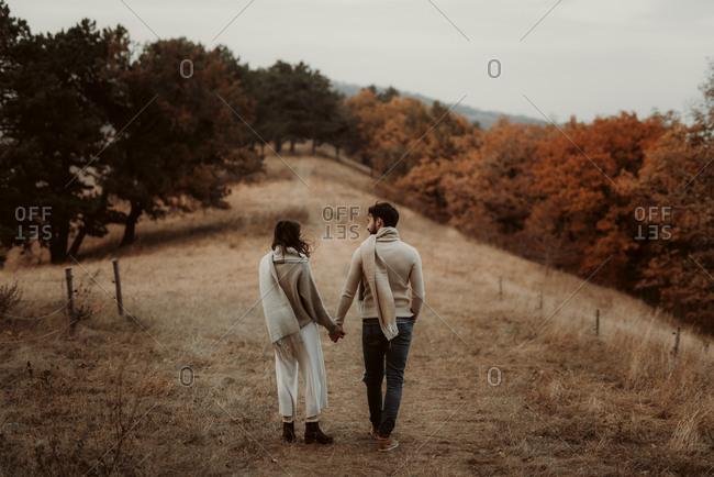 Rear view of couple walking in an autumn field